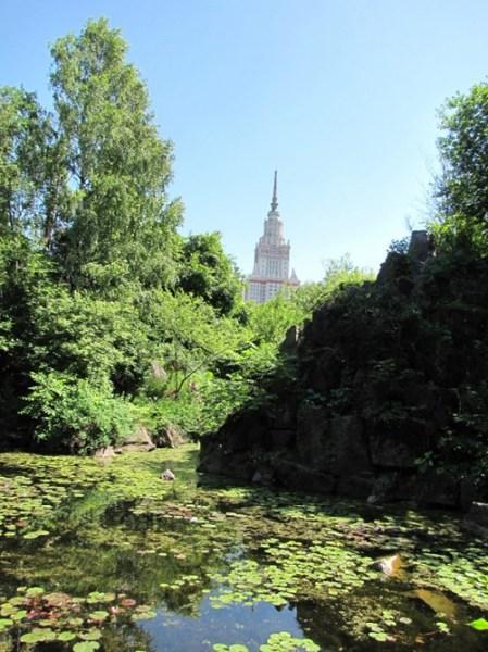 сайт знакомств со шлюхами новгород