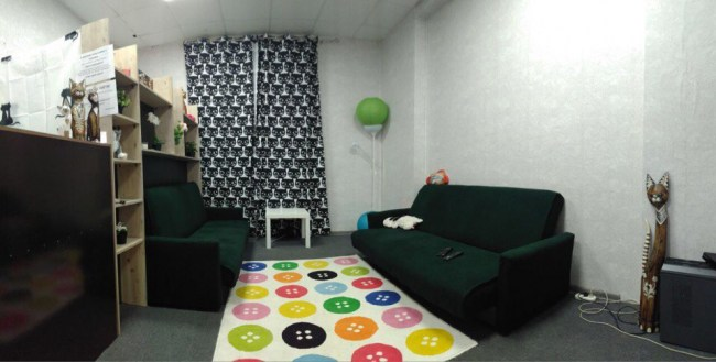 Фотография хостела Hostel Cats в Москве
