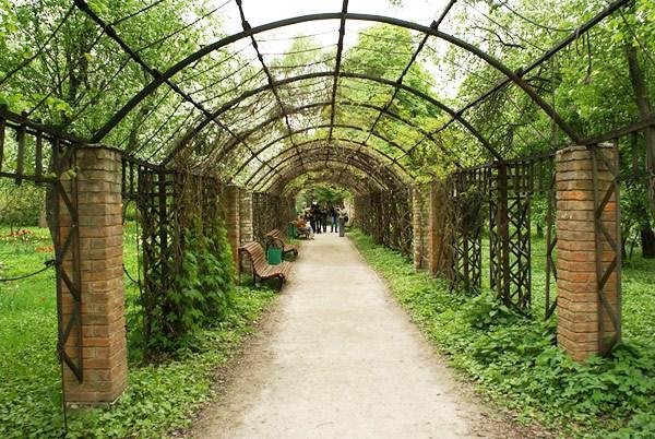 Фотография достопримечательности. Ботанический Сад МГУ в Санкт-Петербурге