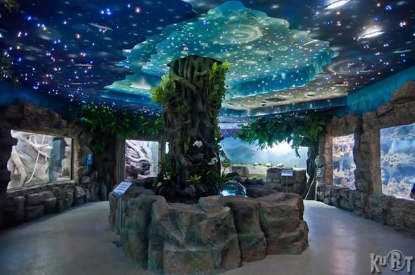 Фотография достопримечательности Океанариум